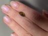 Черный эфиопский опал маркиз вес 1.17 карат, размер 12х6мм (opal0695)