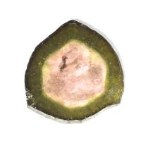 Спил кристалла полихромного турмалина, вес 7.92 карат, размер 18х16.5мм (turm0302)
